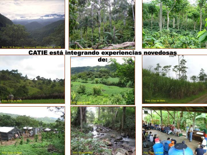 Foto C. M. Rodriguez , Symposium  Multi-sstrata 2007 -CATIE