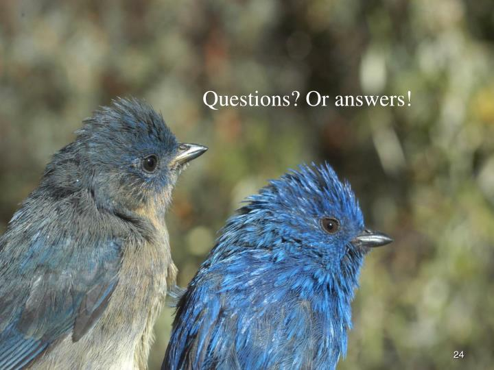 Questions? Or answers!