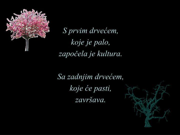 S prvim drvećem,