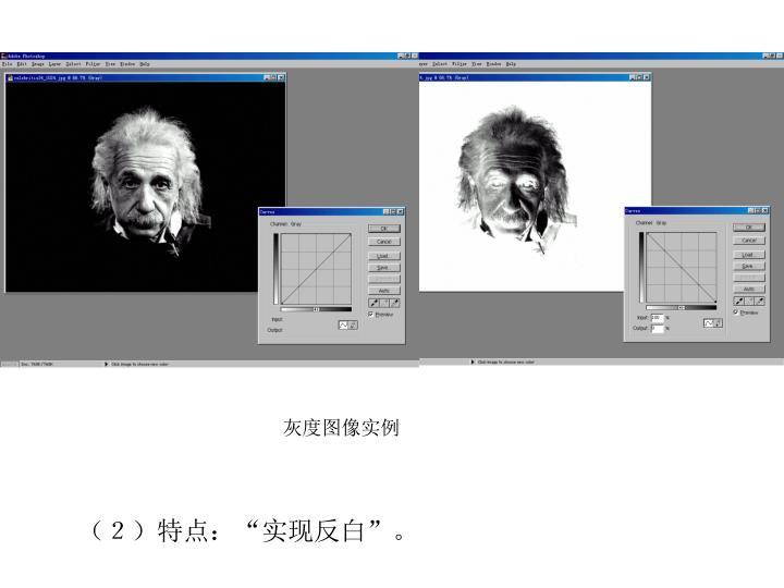 灰度图像实例