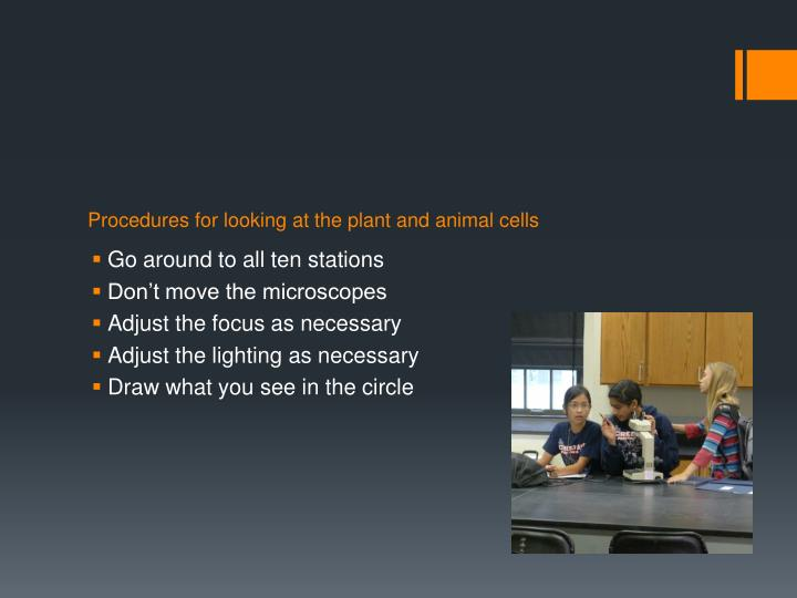 Procedures for looking at the plant and animal cells