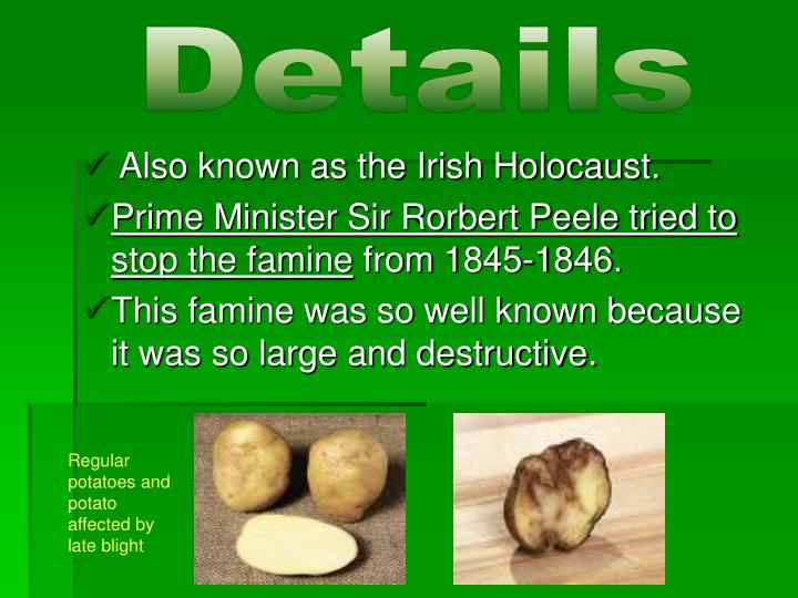 an overview of the infamous irish potato famine between 1845 1850