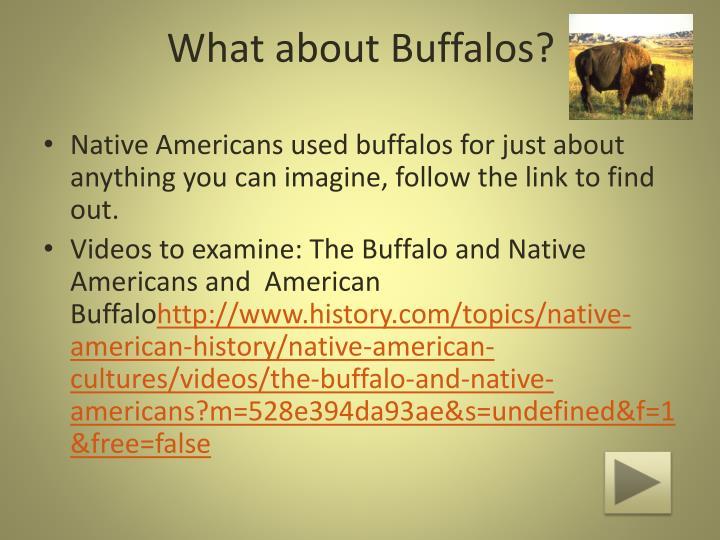native american history topics
