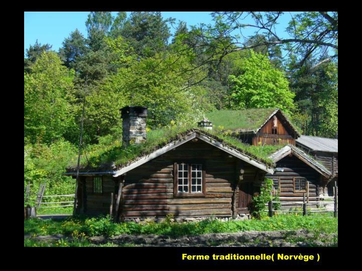 Ferme traditionnelle( Norvège )