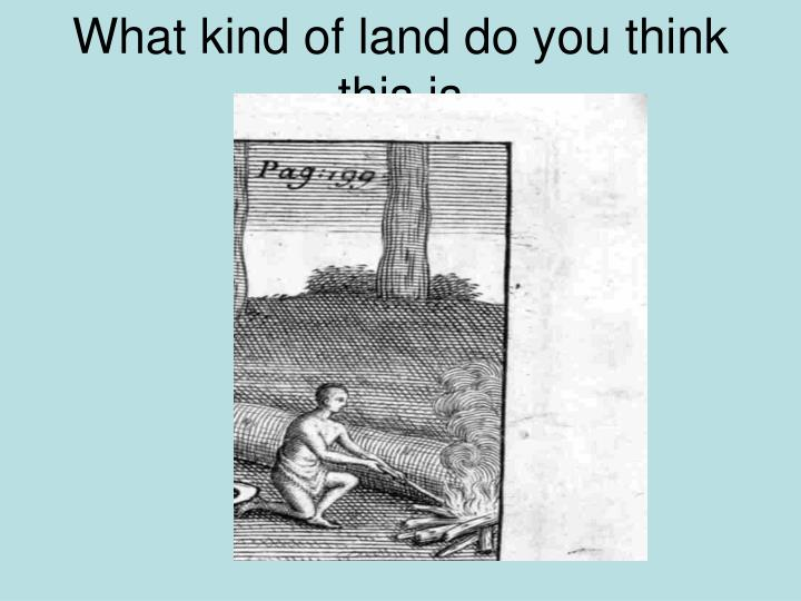What kind of land do you think this is