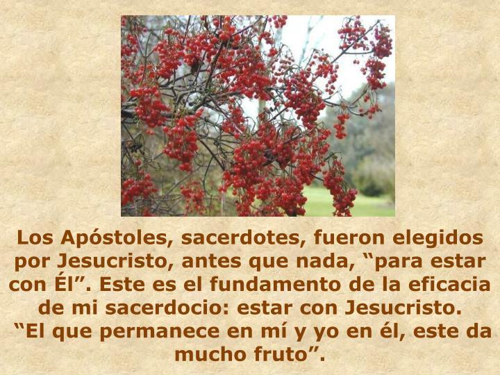 """Los Apóstoles, sacerdotes, fueron elegidos por Jesucristo, antes que nada, """"para estar con Él"""". Este es el fundamento de la eficacia de mi sacerdocio: estar con Jesucristo."""