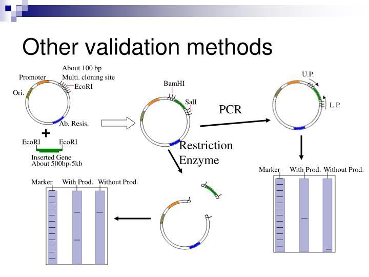 Other validation methods