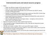 environmental assets and natural resources progress