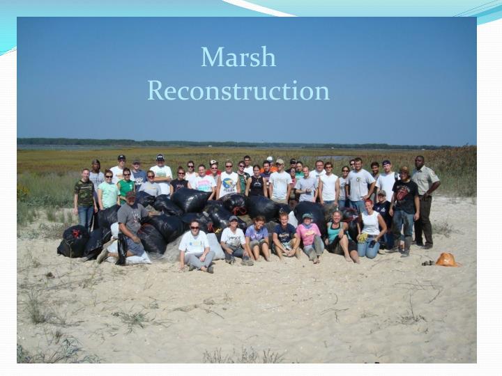 Marsh Reconstruction
