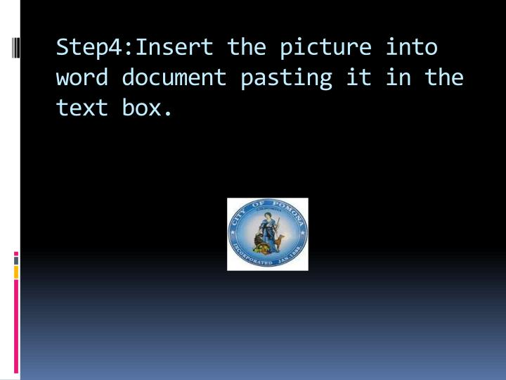 Step4:Insert the picture into word document pasting it in the text box.