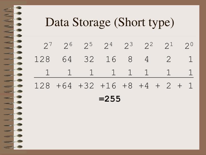 Data Storage (Short type)
