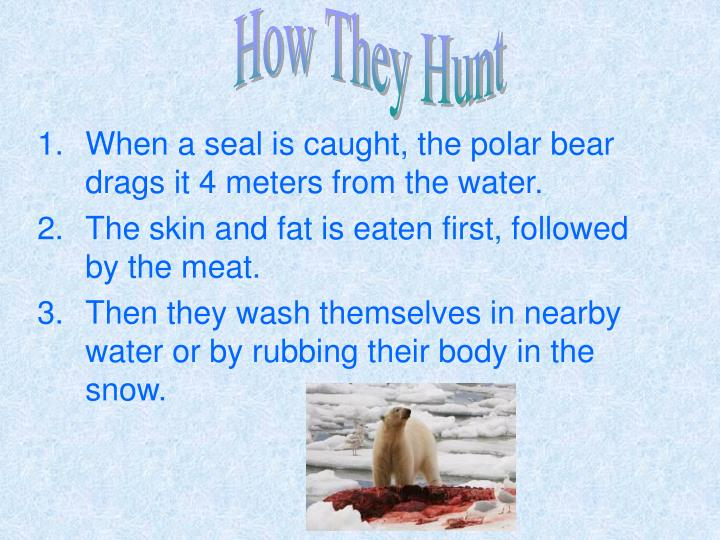 How They Hunt