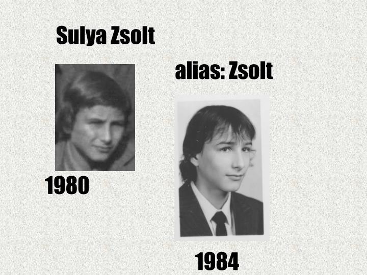 Sulya Zsolt