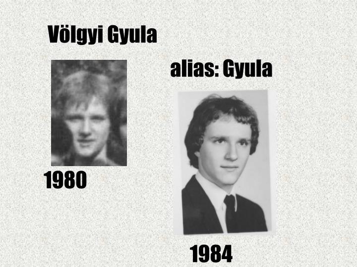 Völgyi Gyula