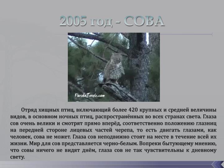 2005 год - СОВА