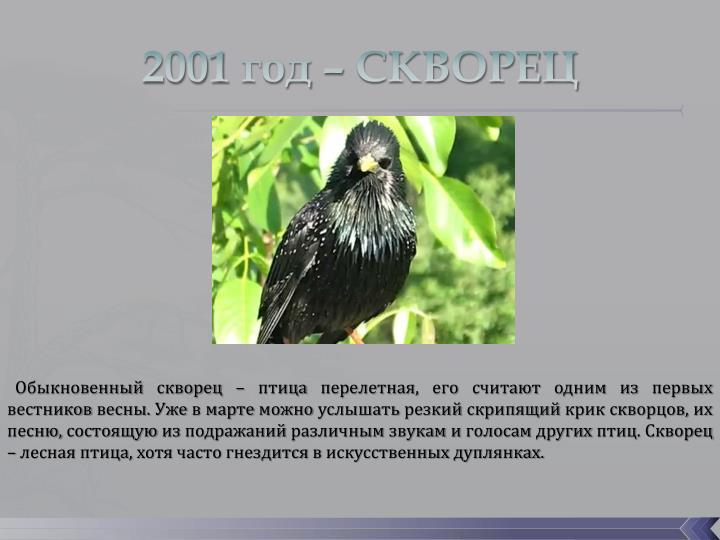 2001 год – СКВОРЕЦ