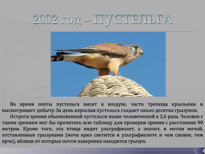 2002 год – ПУСТЕЛЬГА