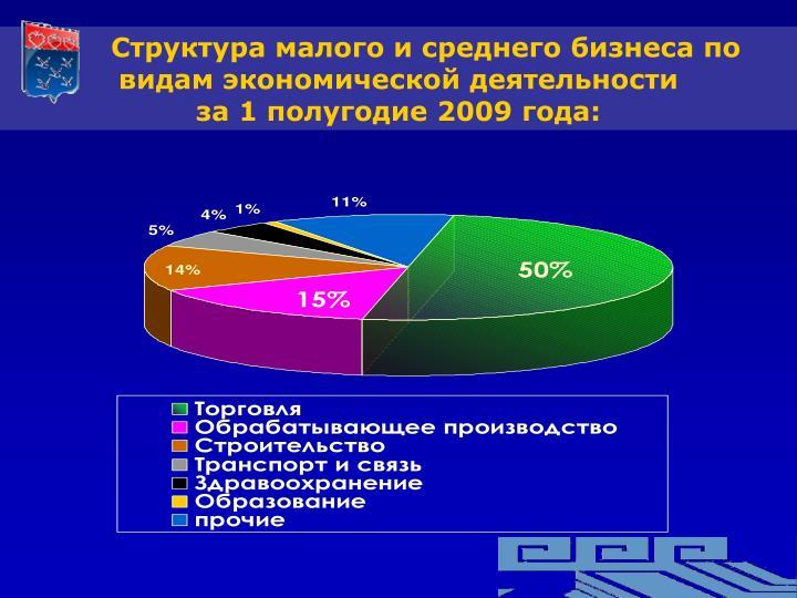 Структура малого и среднего бизнеса по  видам экономической деятельности