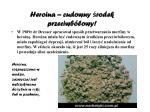 heroina cudowny rodek przeciwb lowy