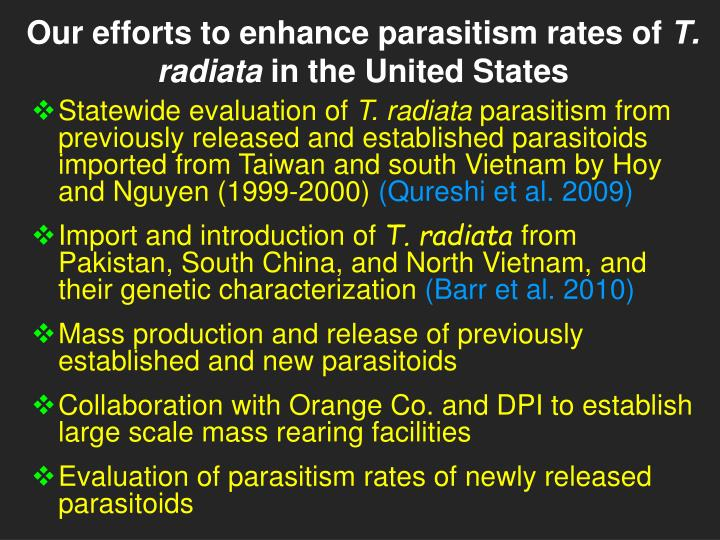 Our efforts to enhance parasitism rates of t radiata in the united states