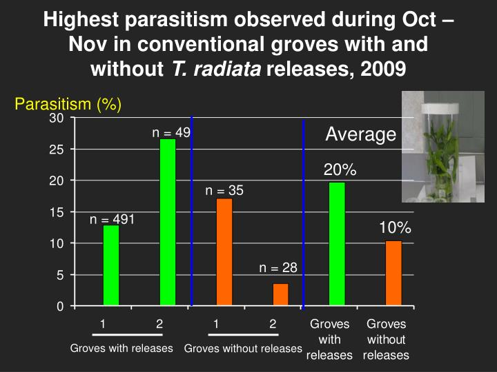 Highest parasitism observed during Oct – Nov in conventional groves with and without