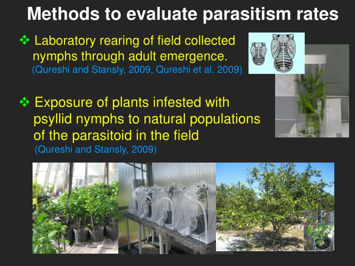 Methods to evaluate parasitism rates
