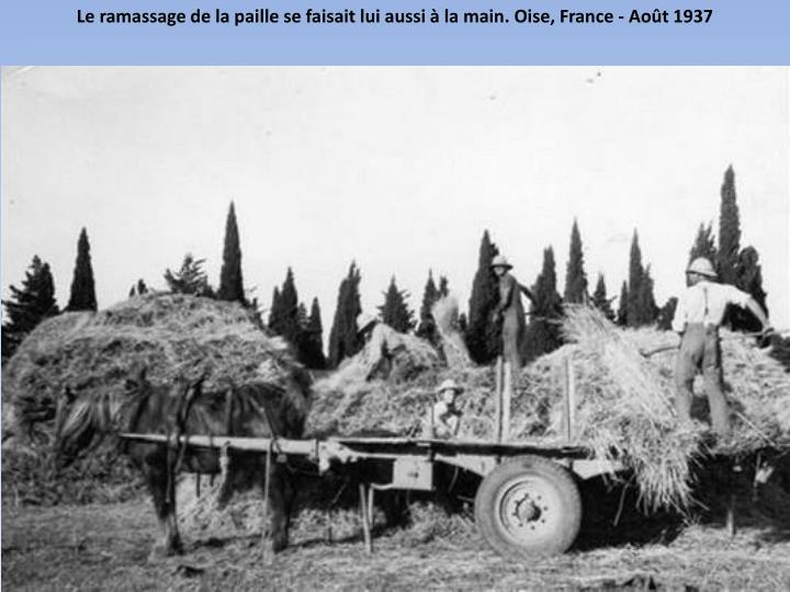 Le ramassage de la paillese faisait lui aussi à la main. Oise, France - Août 1937