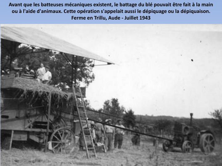 Avant que les batteuses mécaniques existent, le battage du blé pouvait être fait à la main