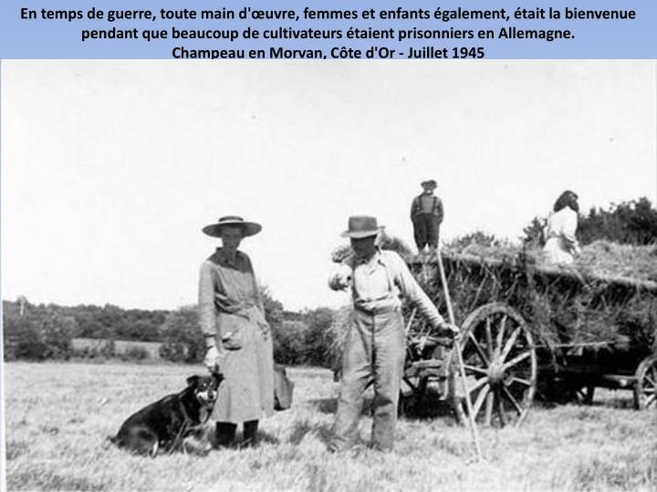 En temps de guerre, toute main d'œuvre, femmes et enfants également, était la bienvenue pendant que beaucoup de cultivateurs étaient prisonniers en Allemagne.