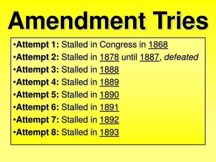 Amendment Tries