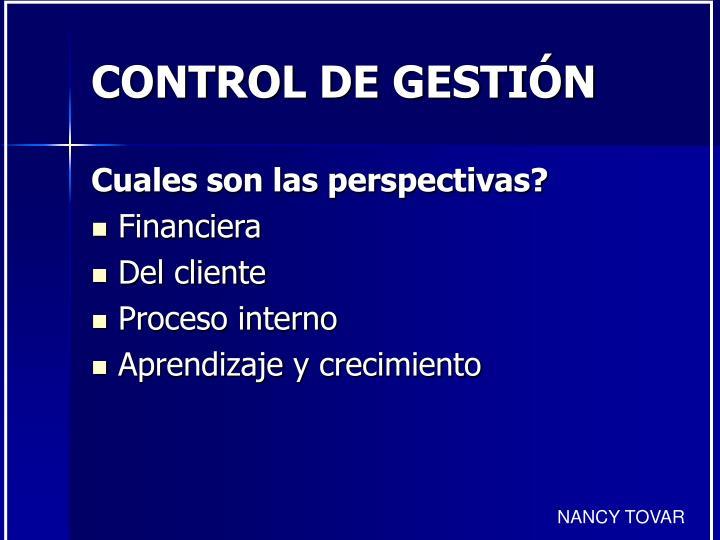 Control de gesti n1