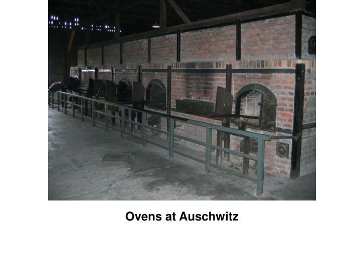 Ovens at Auschwitz