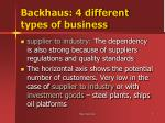 backhaus 4 different types of business