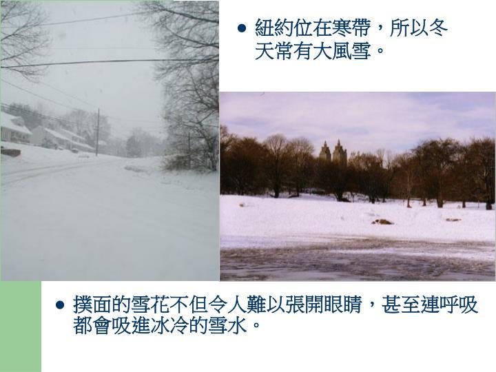 紐約位在寒帶,所以冬天常有大風雪。