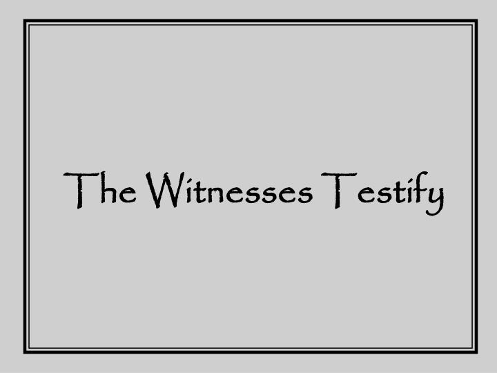 The witnesses testify
