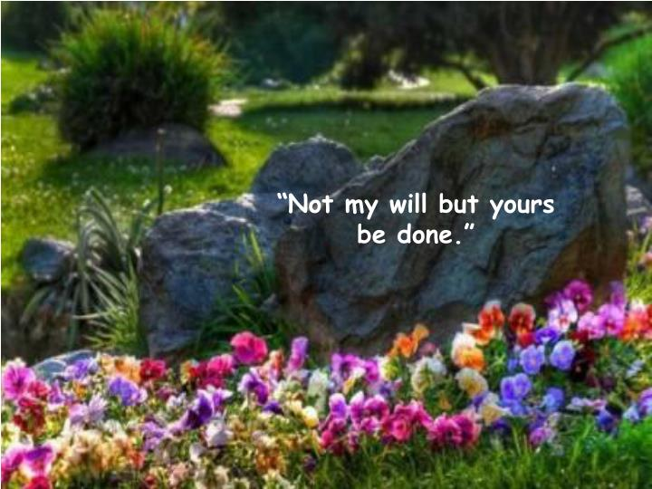 """""""Not my will but yours be done."""""""