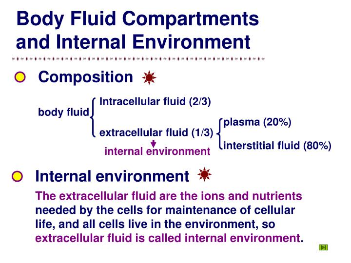 Intracellular fluid (2/3)