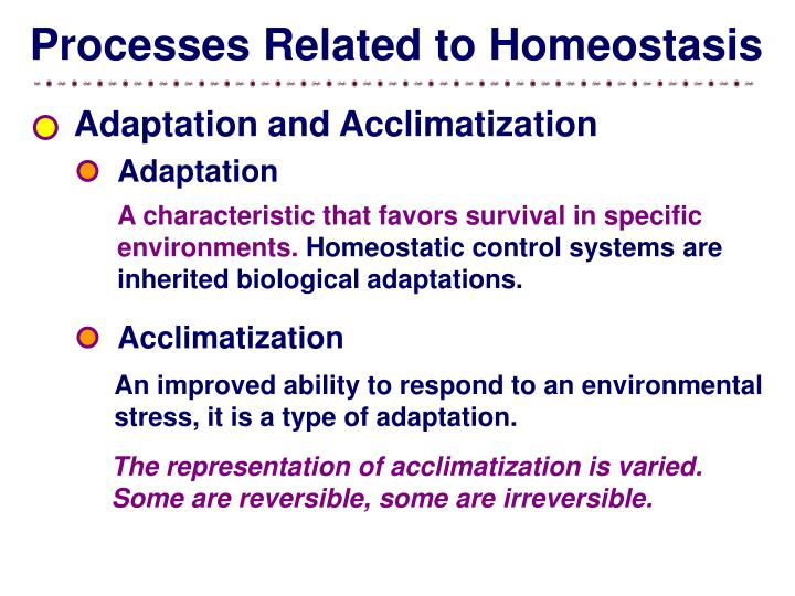 Processes Related to Homeostasis