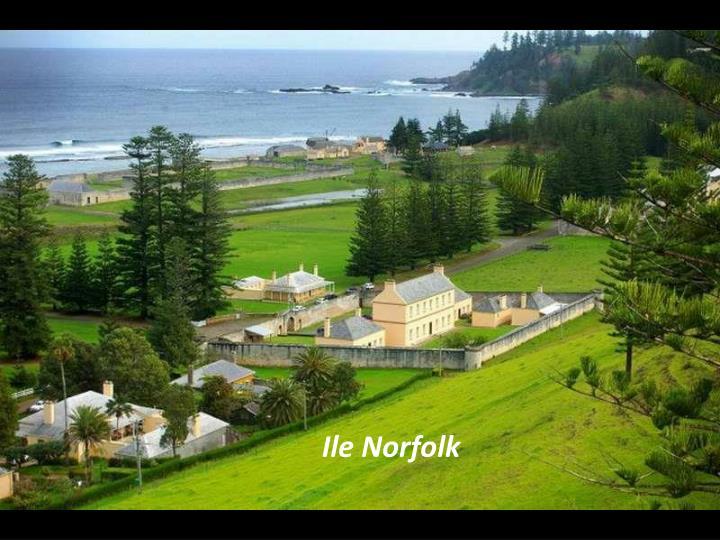 Ile Norfolk