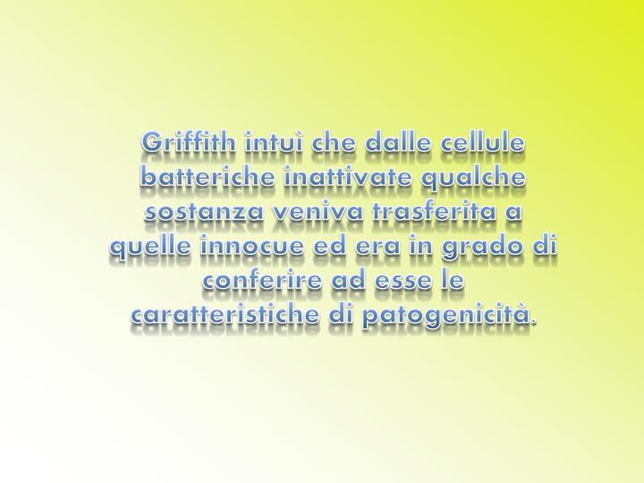 Griffith intuì che dalle cellule batteriche inattivate qualche sostanza veniva trasferita a quelle innocue ed era in grado di conferire ad esse le caratteristiche di patogenicità.