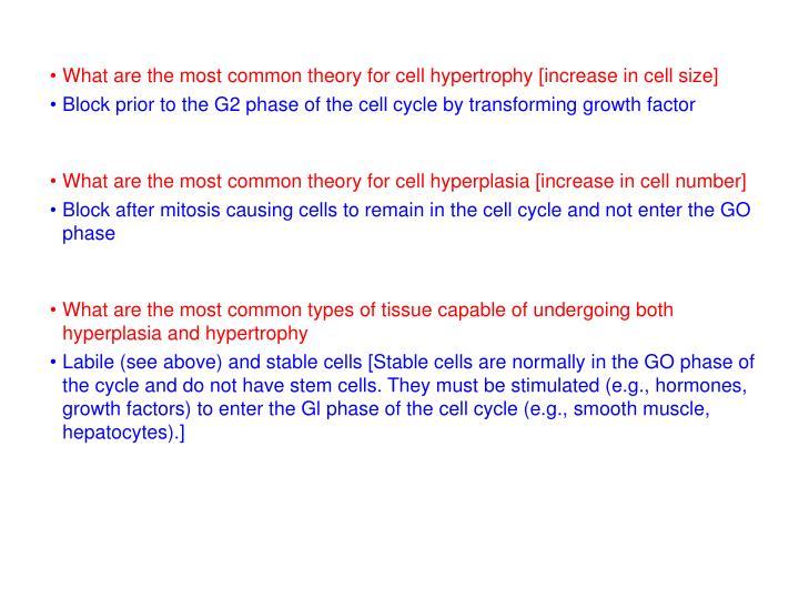 What are the most common theory for cell hypertrophy [increase in cell size]