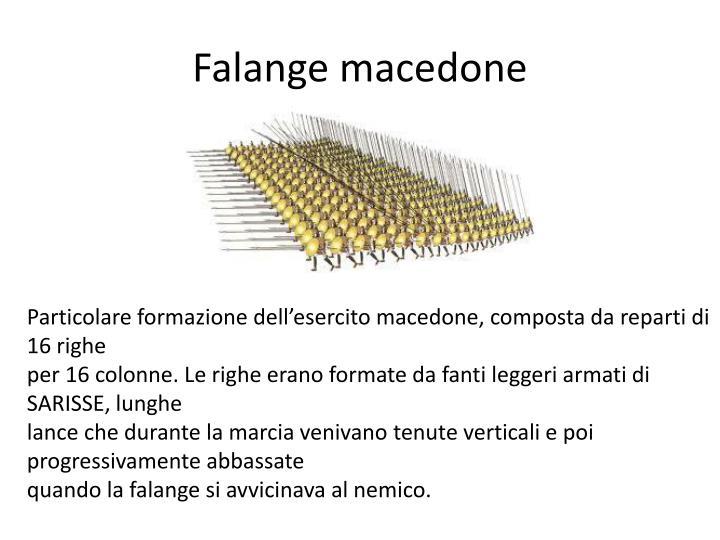 Falange macedone