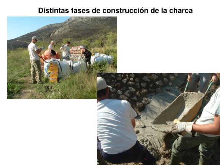 Distintas fases de construcción de la charca