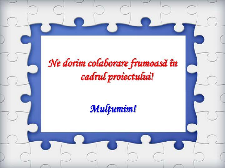Ne dorim colaborare frumoasă în cadrul proiectului!