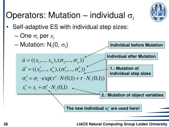 Individual before Mutation