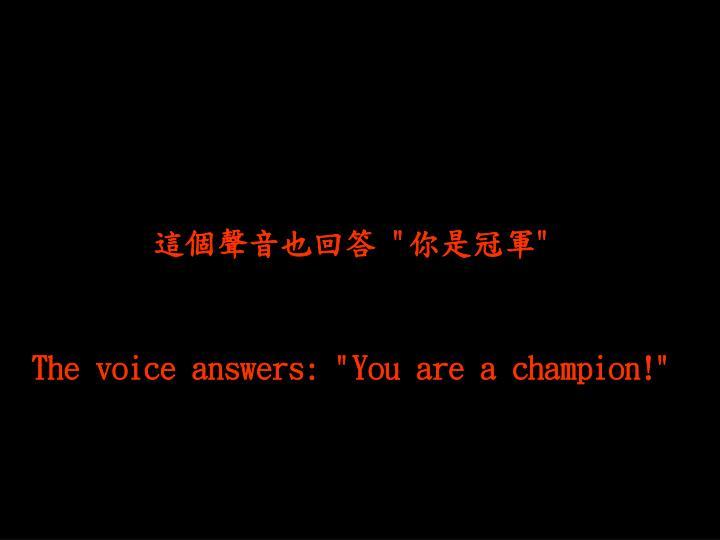 這個聲音也回答