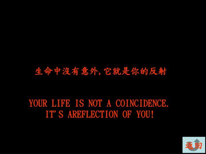 生命中沒有意外