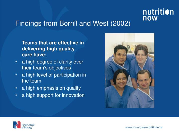 Findings from borrill and west 2002