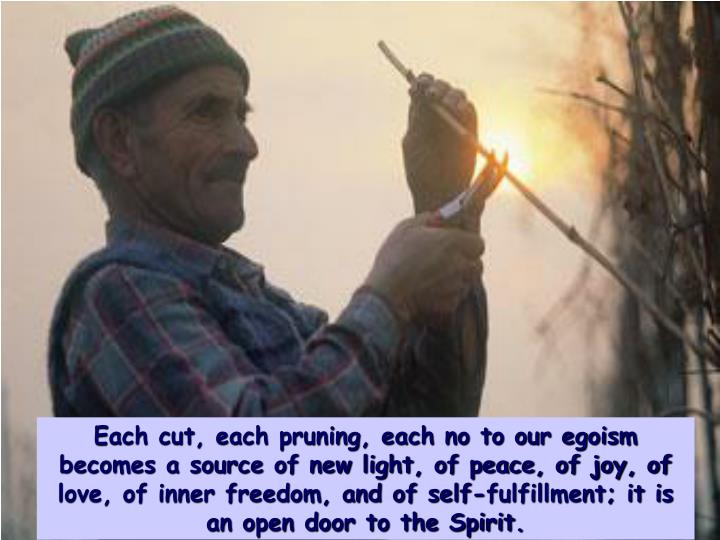 Each cut, each pruning, each no to our egoism becomes a source of new light, of peace, of joy, of love, of inner freedom, and of self-fulfillment; it is an open door to the Spirit.
