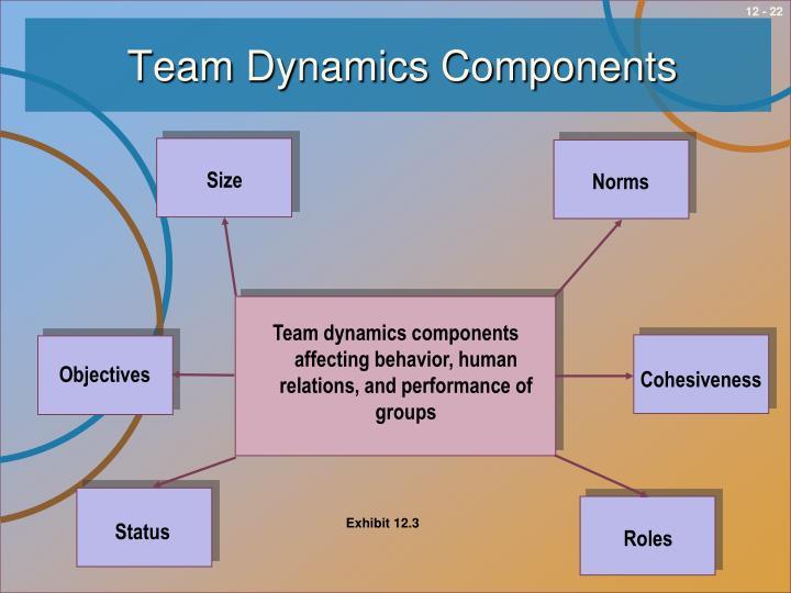 Team Dynamics Components